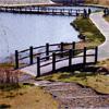 プラ擬木 橋